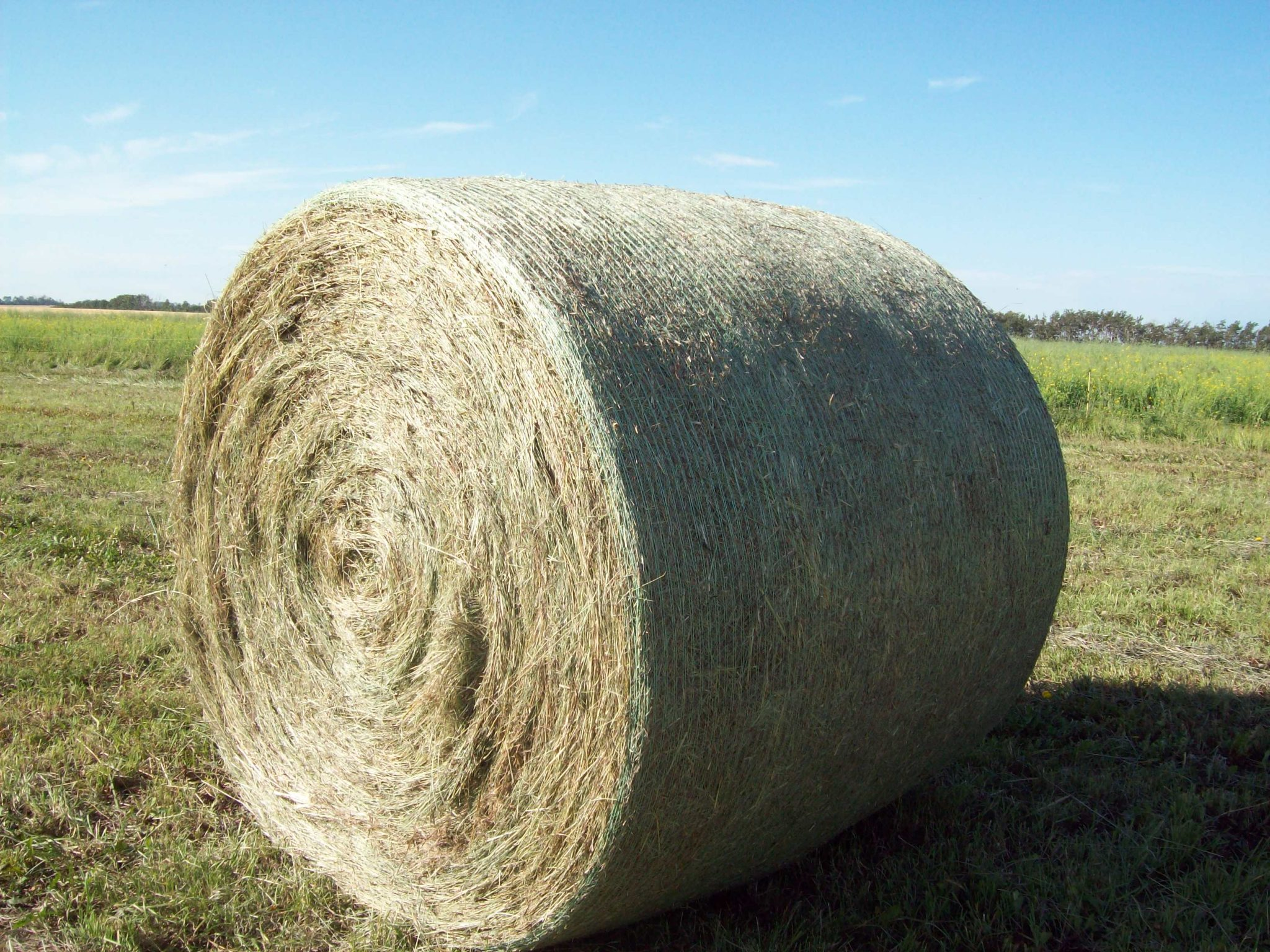 Canuck Netwrap – Canadian Hay & Silage
