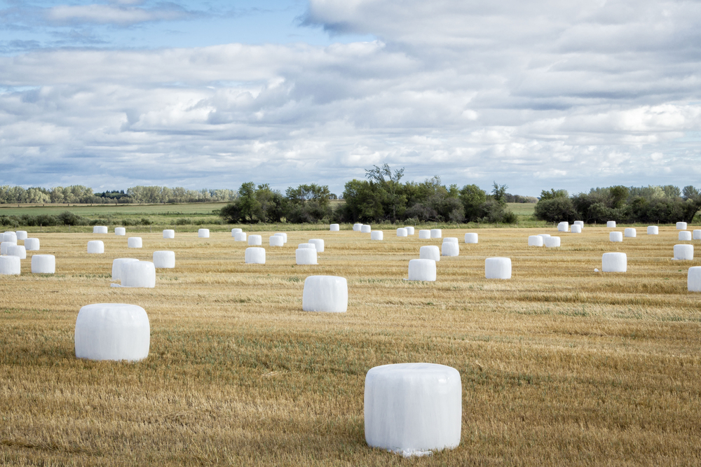 Bale Wrap – Canadian Hay & Silage